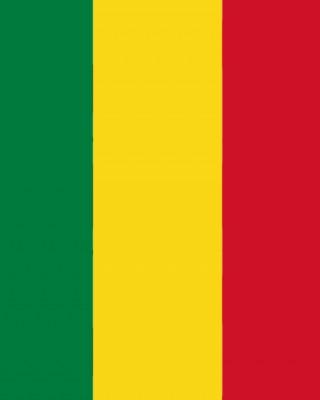 Devlet Bayrakları - Bolivya